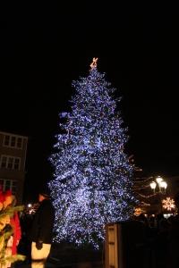 Auburn Hills Tree Lighting