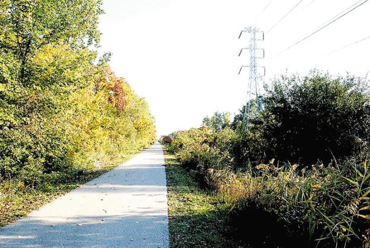 It is ITC's duty to make sure vegetation does not interfere with the transmission lines or disrupt power, similar to this example along the Macomb Orchard Trail.
